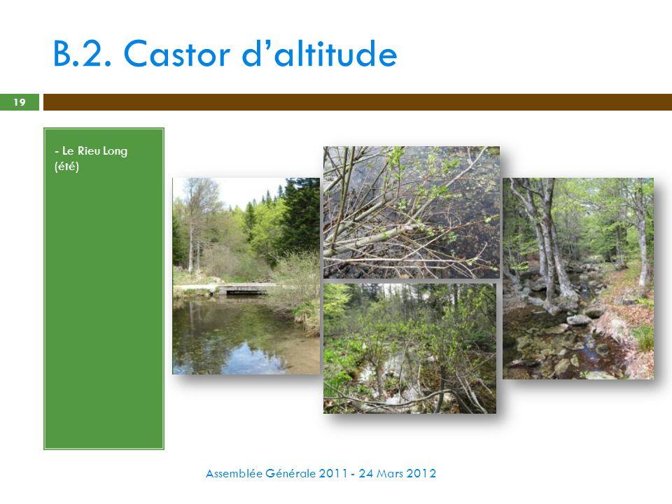 B.2. Castor daltitude Assemblée Générale 2011 - 24 Mars 2012 19 - Le Rieu Long (été)