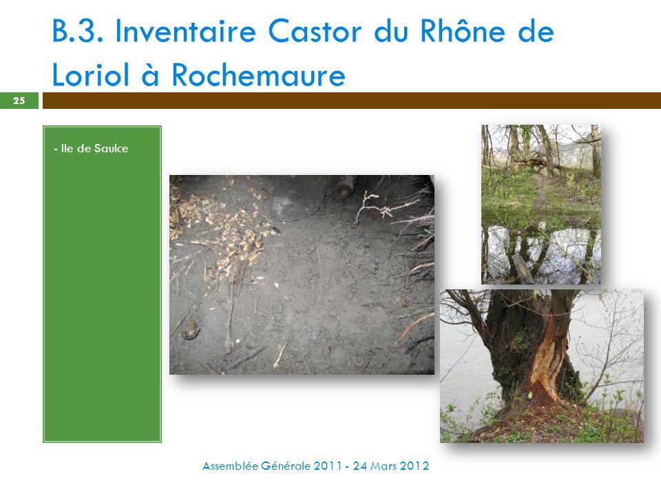 B.3. Inventaire Castor du Rhône de Loriol à Rochemaure Assemblée Générale 2011 - 24 Mars 2012 25 - Ile de Saulce