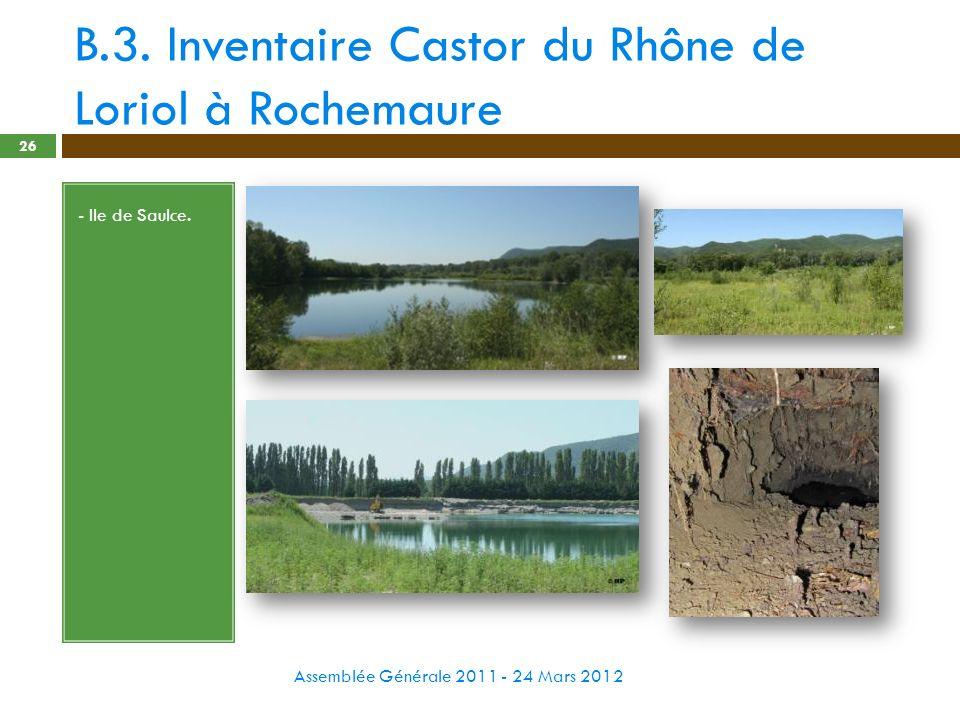 B.3. Inventaire Castor du Rhône de Loriol à Rochemaure Assemblée Générale 2011 - 24 Mars 2012 26 - Ile de Saulce.