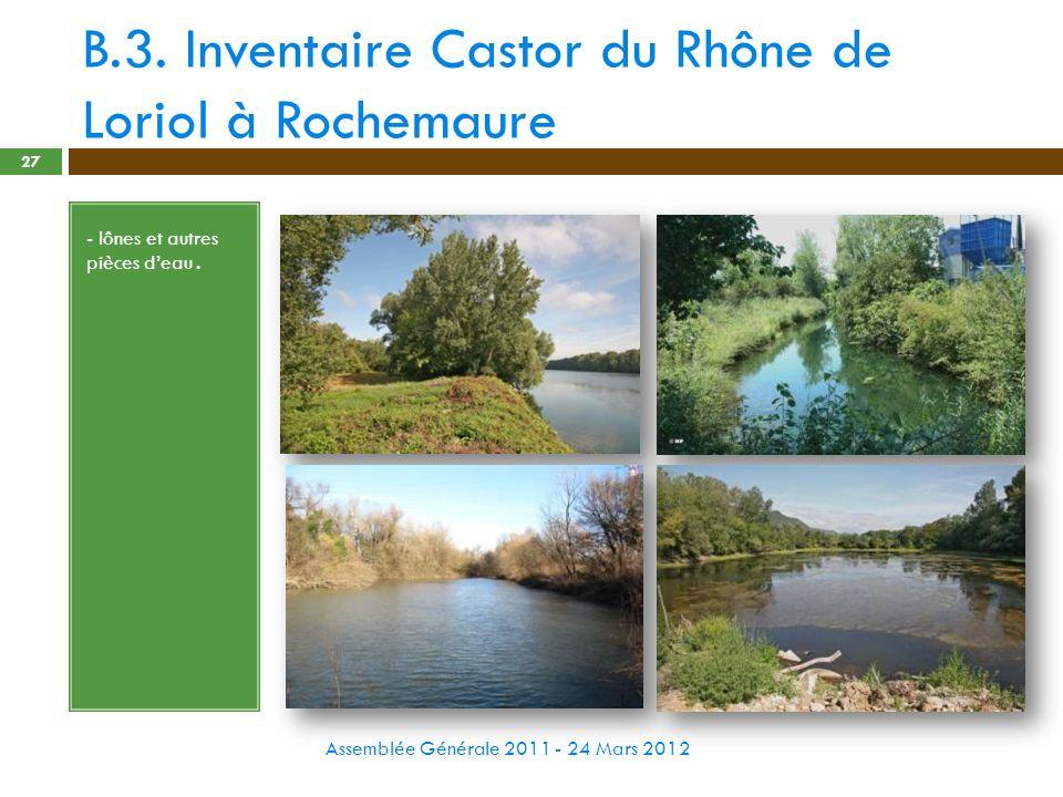 B.3. Inventaire Castor du Rhône de Loriol à Rochemaure Assemblée Générale 2011 - 24 Mars 2012 27 - lônes et autres pièces deau.