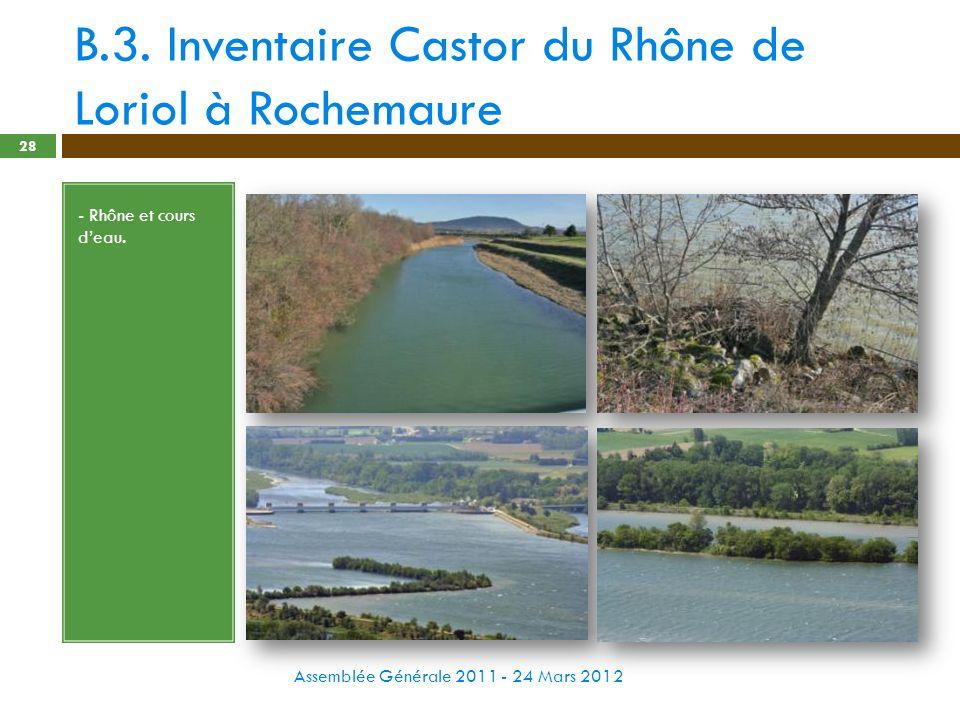 B.3. Inventaire Castor du Rhône de Loriol à Rochemaure Assemblée Générale 2011 - 24 Mars 2012 28 - Rhône et cours deau.