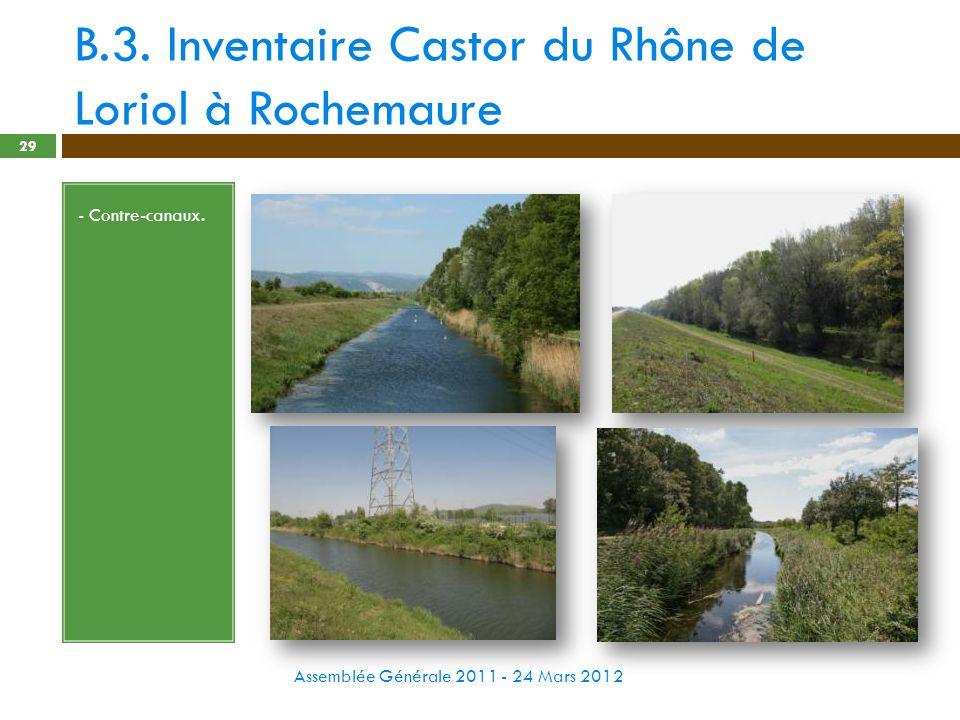 B.3. Inventaire Castor du Rhône de Loriol à Rochemaure Assemblée Générale 2011 - 24 Mars 2012 29 - Contre-canaux.