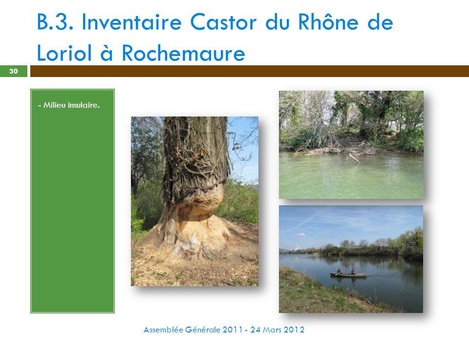 B.3. Inventaire Castor du Rhône de Loriol à Rochemaure Assemblée Générale 2011 - 24 Mars 2012 30 - Milieu insulaire.