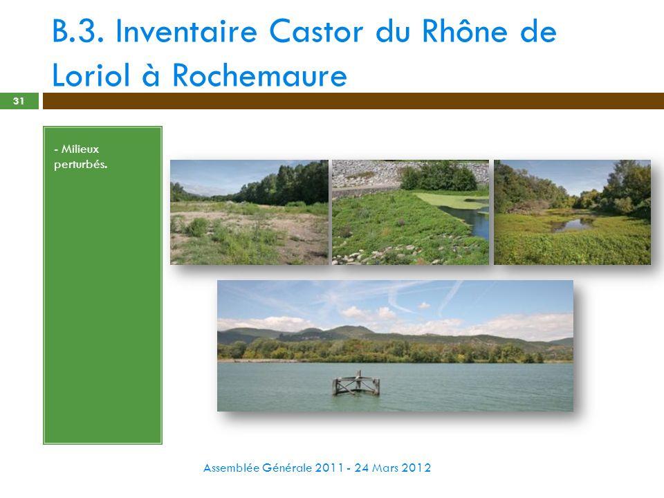 B.3. Inventaire Castor du Rhône de Loriol à Rochemaure Assemblée Générale 2011 - 24 Mars 2012 31 - Milieux perturbés.