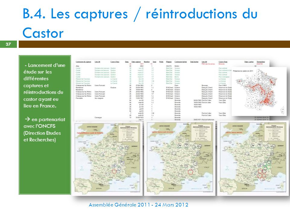 B.4. Les captures / réintroductions du Castor Assemblée Générale 2011 - 24 Mars 2012 37 - - Lancement dune étude sur les différentes captures et réint