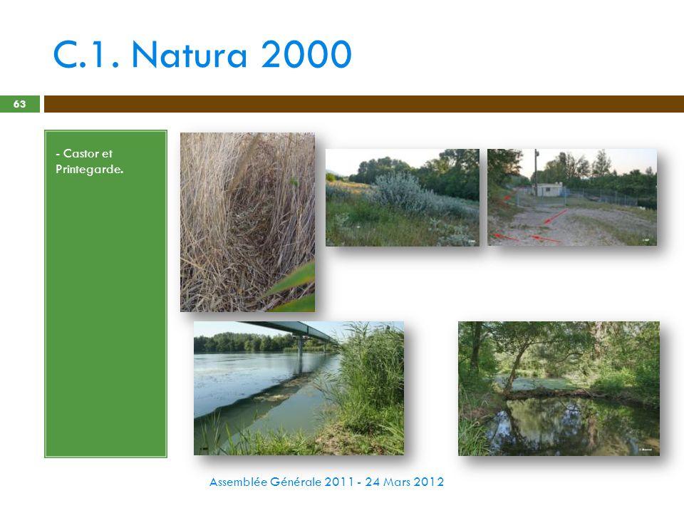 C.1. Natura 2000 Assemblée Générale 2011 - 24 Mars 2012 63 - Castor et Printegarde.