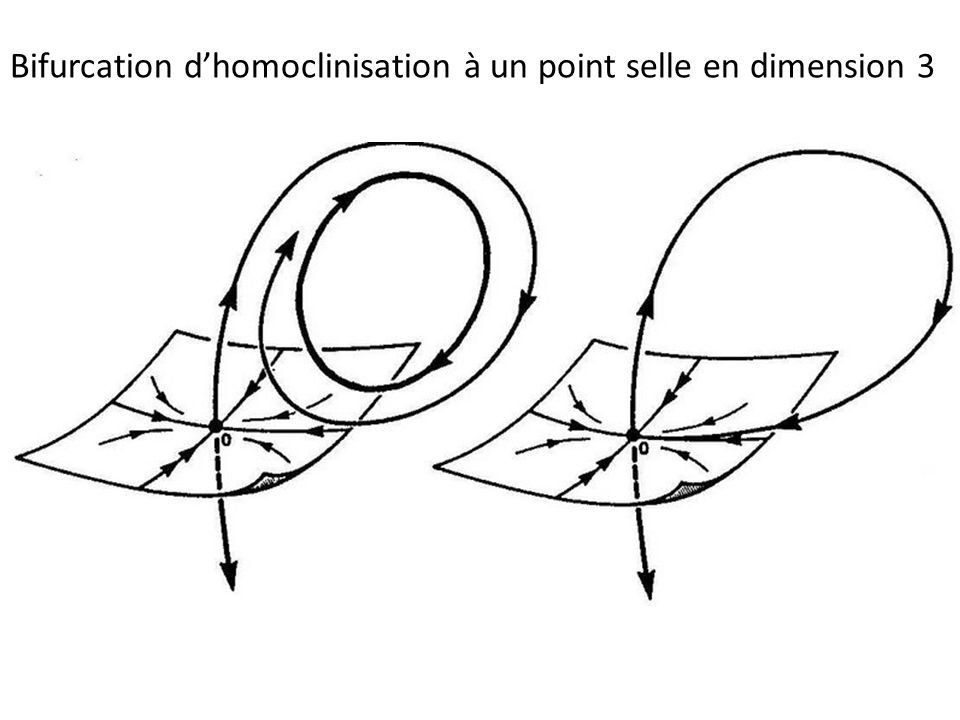 Bifurcation dhomoclinisation à un point selle en dimension 3