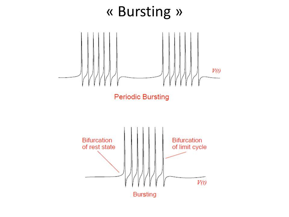 « Bursting »