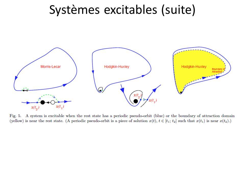 Systèmes excitables (suite)