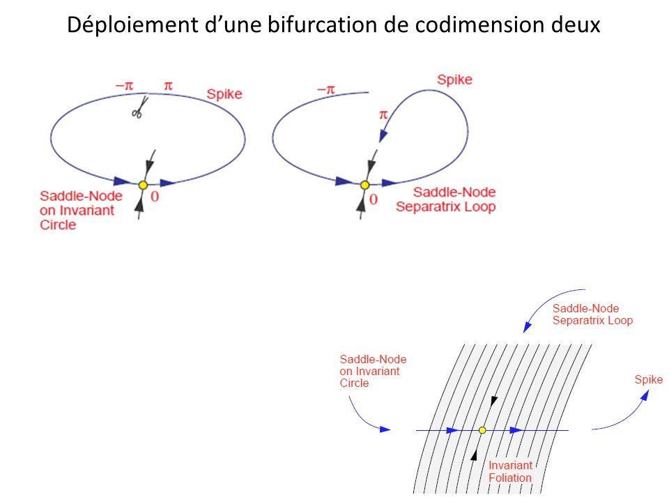 Déploiement dune bifurcation de codimension deux