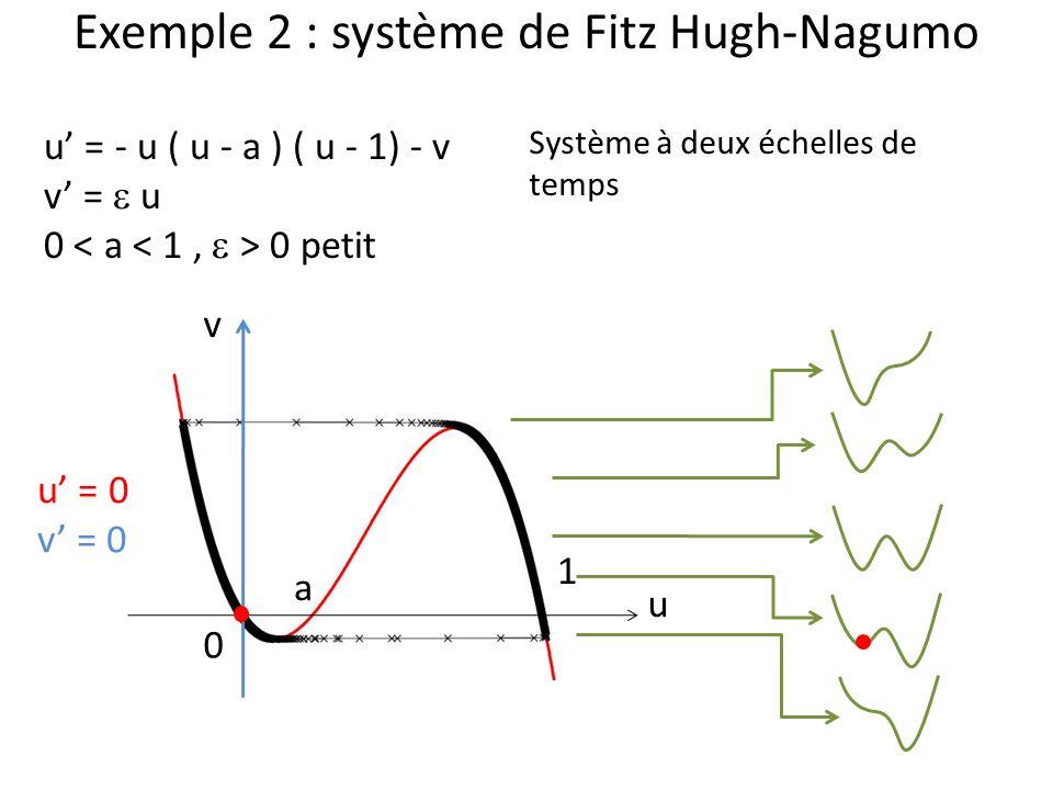Exemple 2 : système de Fitz Hugh-Nagumo u v u = - u ( u - a ) ( u - 1) - v v = u 0 0 petit 0 1 a Système à deux échelles de temps u = 0 v = 0