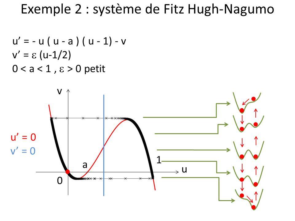 Exemple 2 : système de Fitz Hugh-Nagumo u v u = - u ( u - a ) ( u - 1) - v v = (u-1/2) 0 0 petit 0 1 a u = 0 v = 0