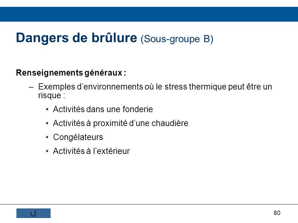 80 Dangers de brûlure (Sous-groupe B) Renseignements généraux : –Exemples denvironnements où le stress thermique peut être un risque : Activités dans