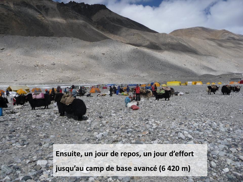 La route jusquau camp de base (5 000 m) se fait en 4x4, à 40km/h, avec des contrôles militaires, points de passage obligés, qui rendent tout excès de vitesse impensable.