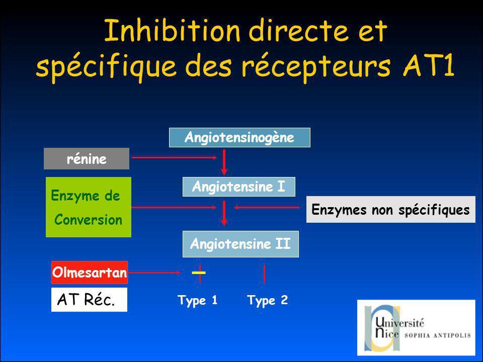 Inhibition directe et spécifique des récepteurs AT1 Angiotensinogène Angiotensine I Angiotensine II Enzymes non spécifiques Type 1Type 2 Olmesartan rénine Enzyme de Conversion AT Réc.