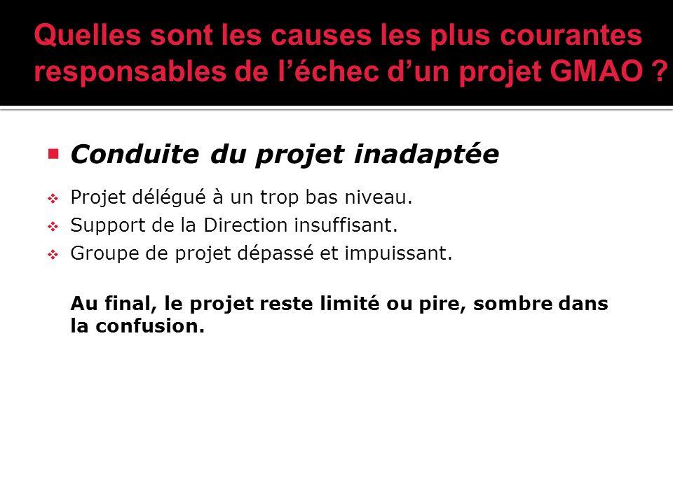 Conduite du projet inadaptée Projet délégué à un trop bas niveau.