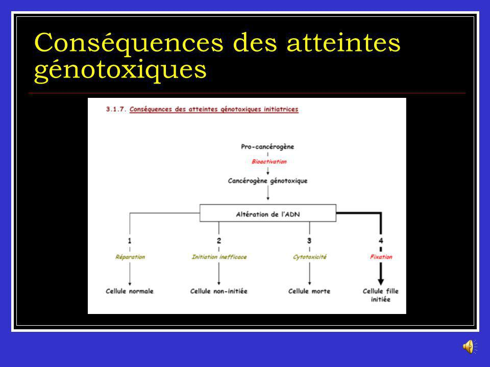 Les atteintes génotoxiques Mutations géniques : changement des séquences dADN des gènes (substitution, insertion ou délétion) Mutations chromosomiques : changement de la structure du chromosome (délétion, duplication, inversion ou translocation) Mutations génomiques : changement du nombre de chromosome (aneuploidie, polyploidie).