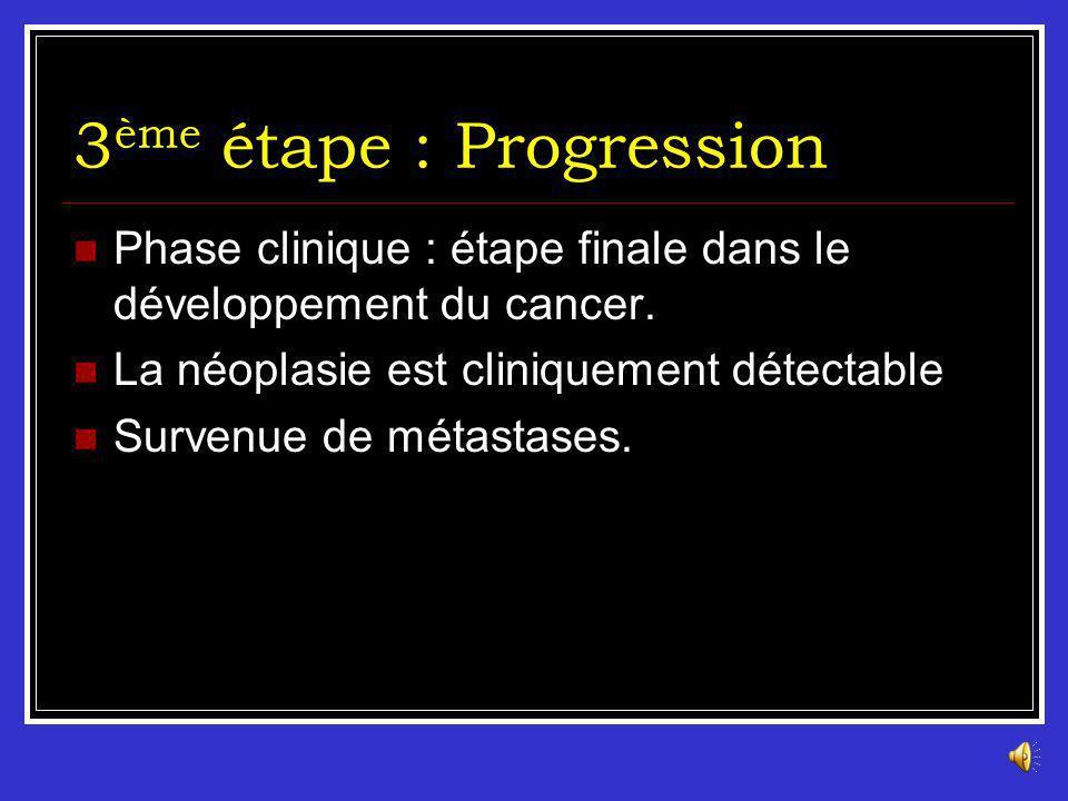 Les agents promoteurs (Exemples) Les promoteurs mitogènes : Endogènes : Hormones stimulant la prolifération cellulaire : Oestrogènes (cancer du sein,