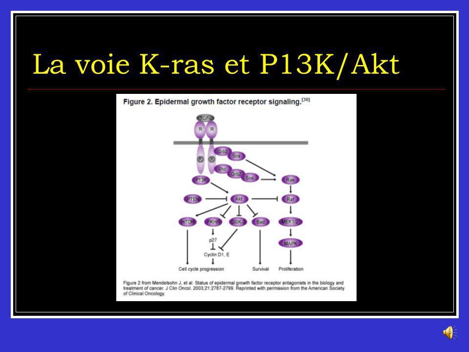 La voie K-ras et P13K/Akt La famille des gènes RAS : HRAS (11p15,5), NRAS(1P13,2) et KRAS2 (12P12,1). Chaque gène code pour une protéine de 21 kDa. Ce