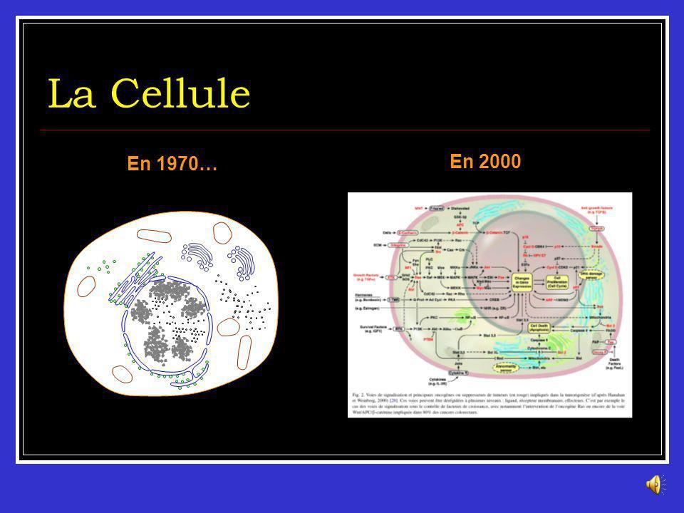 Historique Hippocrate (4ème siècle av JC) 1ère description de tumeurs 1775 - Sir Percivall POTT (GB) : Cancer des ramoneurs & fumées des cheminées