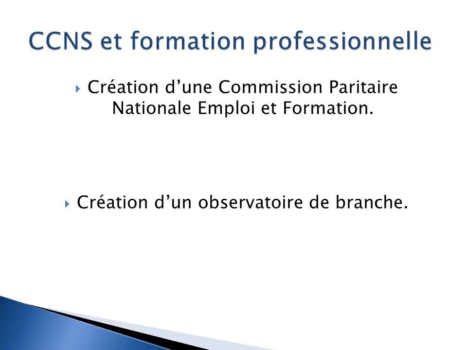 Création dune Commission Paritaire Nationale Emploi et Formation.