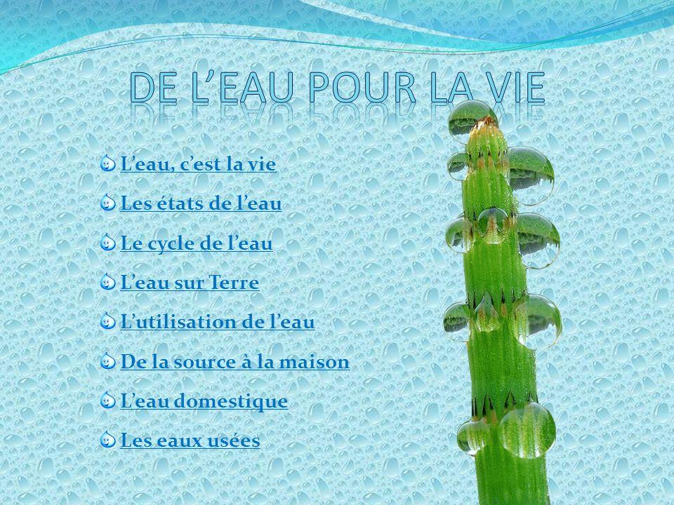 La distribution Le compteur deau sert à connaître le nombre de m3 deau (1 m3 = 1000 litres ).A lécole de la Bouverie on consomme entre 2500 et 3500 litres par jours.