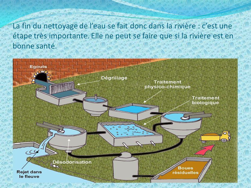 Leau usée sort de ta maison et passe par les égouts. Ce sont de gros tuyaux et des tunnels qui conduisent leau polluée jusquà la station dépuration où