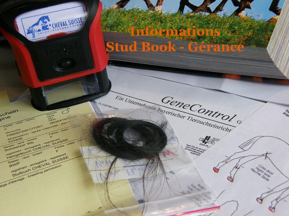 Informations Stud Book - Gérance