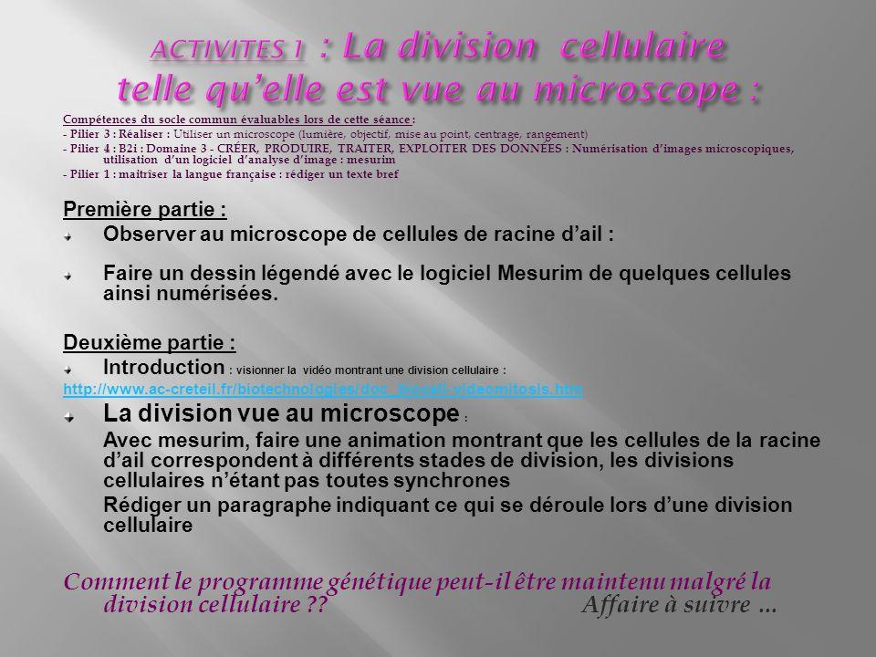 Compétences du socle commun évaluables lors de cette séance : - Pilier 3 : Réaliser : Utiliser un microscope (lumière, objectif, mise au point, centrage, rangement) - Pilier 4 : B2i : Domaine 3 - CRÉER, PRODUIRE, TRAITER, EXPLOITER DES DONNÉES : Numérisation dimages microscopiques, utilisation dun logiciel danalyse dimage : mesurim - Pilier 1 : maitrîser la langue française : rédiger un texte bref Première partie : Observer au microscope de cellules de racine dail : Faire un dessin légendé avec le logiciel Mesurim de quelques cellules ainsi numérisées.