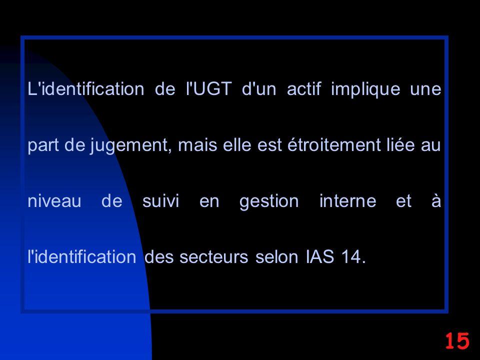 L identification de l UGT d un actif implique une part de jugement, mais elle est étroitement liée au niveau de suivi en gestion interne et à l identification des secteurs selon IAS 14.
