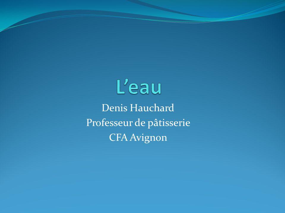 Denis Hauchard Professeur de pâtisserie CFA Avignon