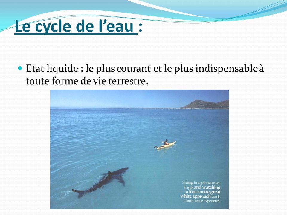 Le cycle de leau : Etat liquide : le plus courant et le plus indispensable à toute forme de vie terrestre.