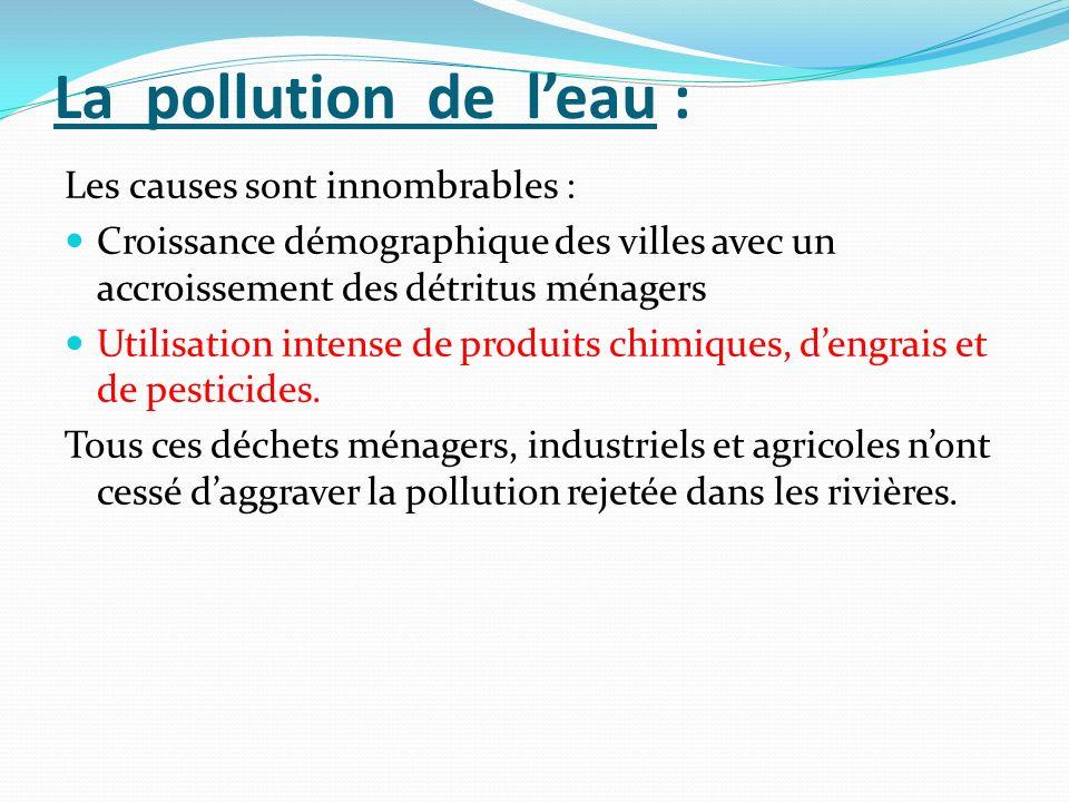 La pollution de leau : Les causes sont innombrables : Croissance démographique des villes avec un accroissement des détritus ménagers Utilisation inte