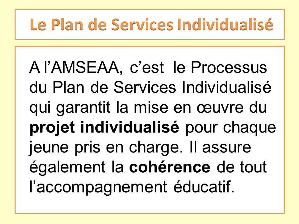 A lAMSEAA, cest le Processus du Plan de Services Individualisé qui garantit la mise en œuvre du projet individualisé pour chaque jeune pris en charge.