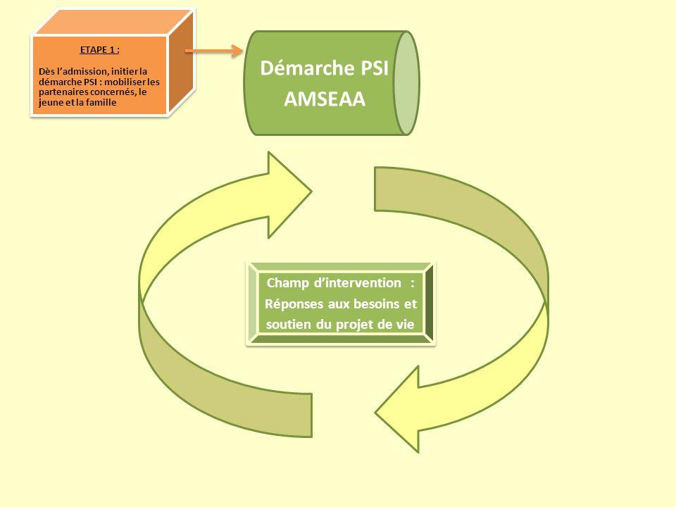 Démarche PSI AMSEAA ETAPE 1 : Dès ladmission, initier la démarche PSI : mobiliser les partenaires concernés, le jeune et la famille ETAPE 1 : Dès ladm