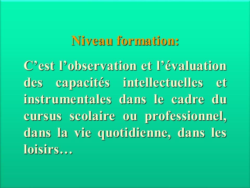 Niveau formation: Cest lobservation et lévaluation des capacités intellectuelles et instrumentales dans le cadre du cursus scolaire ou professionnel,