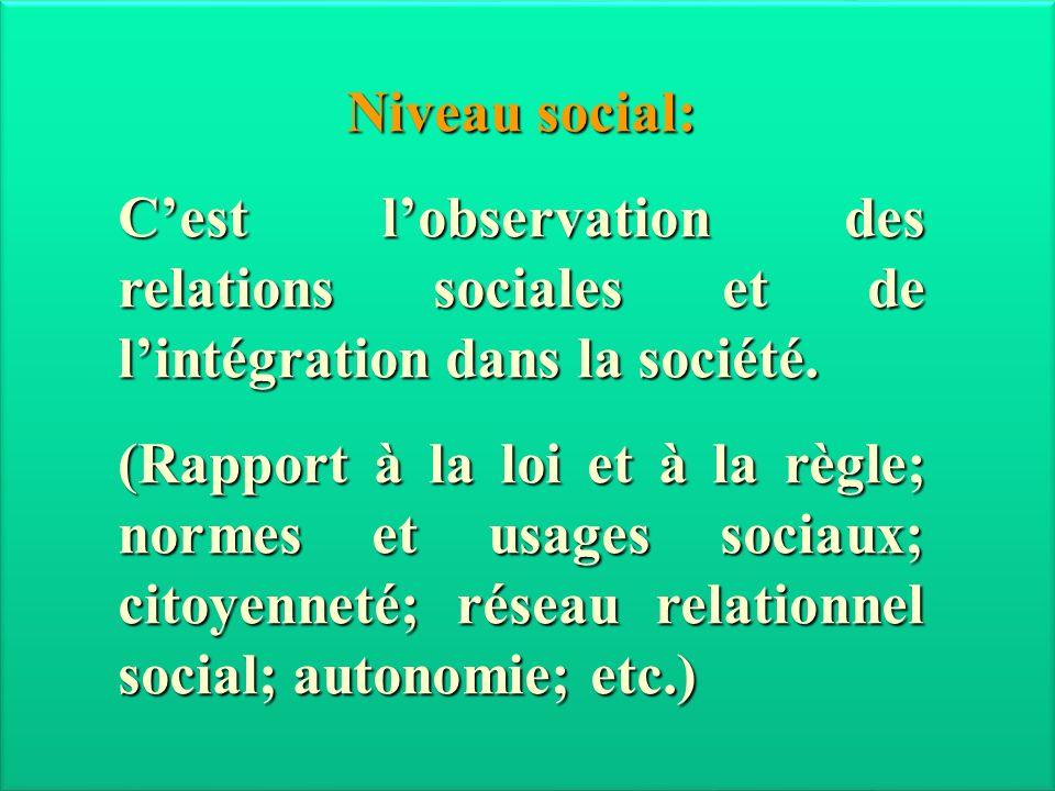 Niveau social: Cest lobservation des relations sociales et de lintégration dans la société. (Rapport à la loi et à la règle; normes et usages sociaux;