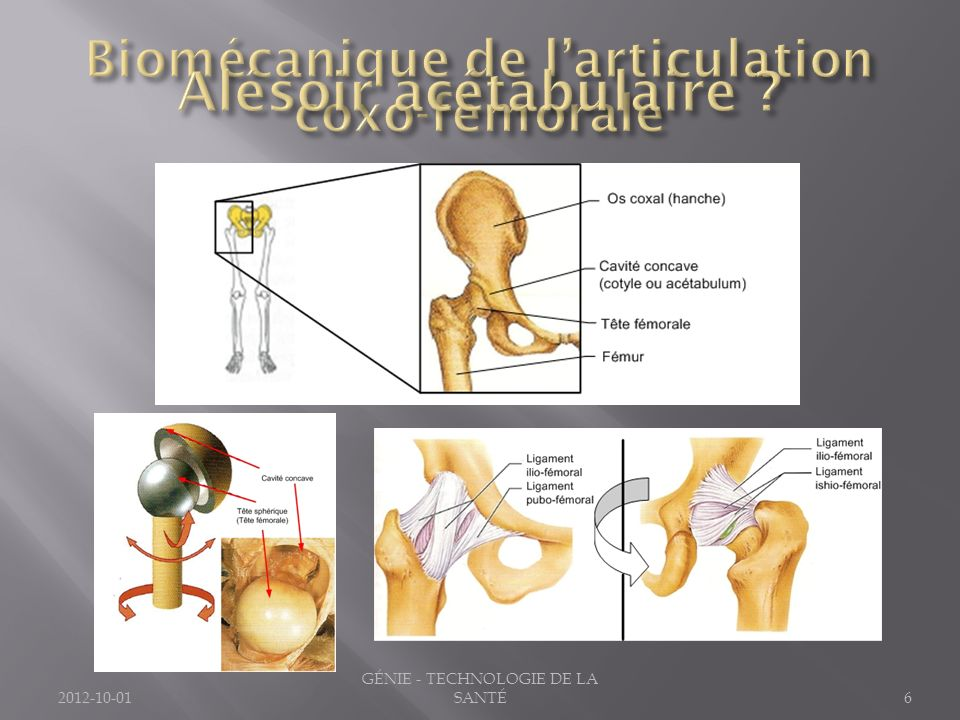 2012-10-016 GÉNIE - TECHNOLOGIE DE LA SANTÉ