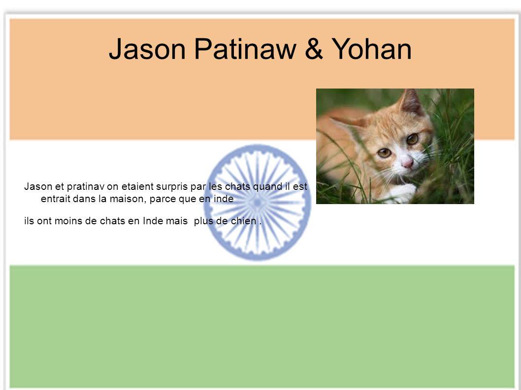 Jason Patinaw & Yohan Jason et pratinav on etaient surpris par les chats quand il est entrait dans la maison, parce que en inde ils ont moins de chats en Inde mais plus de chien.