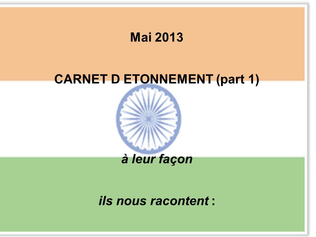 Mai 2013 CARNET D ETONNEMENT (part 1) à leur façon ils nous racontent :