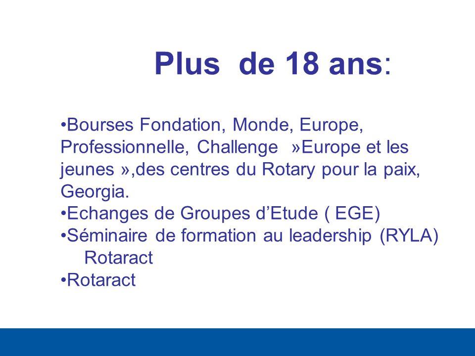 Plus de 18 ans: Bourses Fondation, Monde, Europe, Professionnelle, Challenge »Europe et les jeunes »,des centres du Rotary pour la paix, Georgia.