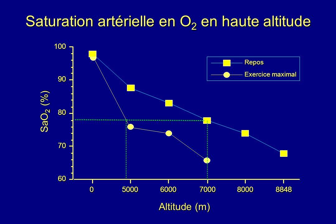 Saturation artérielle en O 2 en haute altitude Repos Exercice maximal Altitude (m) 050006000700080008848 60 70 80 90100 SaO 2 (%)