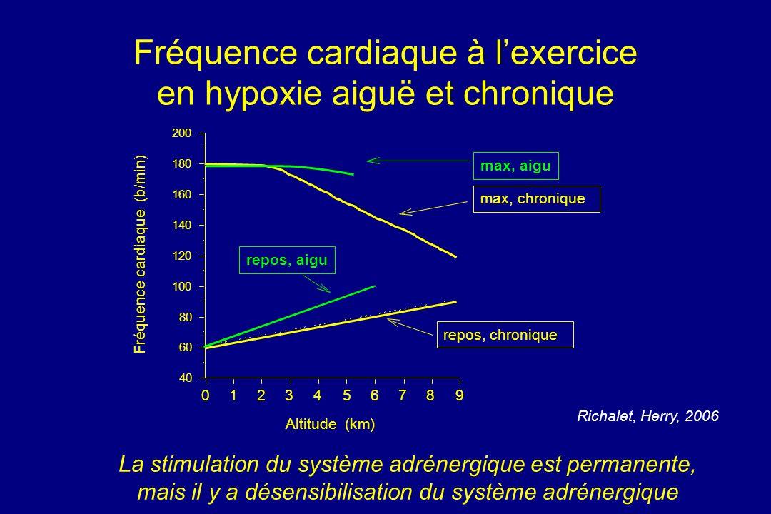 Fréquence cardiaque à lexercice en hypoxie aiguë et chronique 40 60 80 100 120 140 160 180 200 Fréquence cardiaque (b/min) 0123456789 Altitude (km) ma