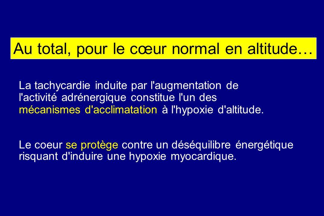 Au total, pour le cœur normal en altitude… La tachycardie induite par l'augmentation de l'activité adrénergique constitue l'un des mécanismes d'acclim