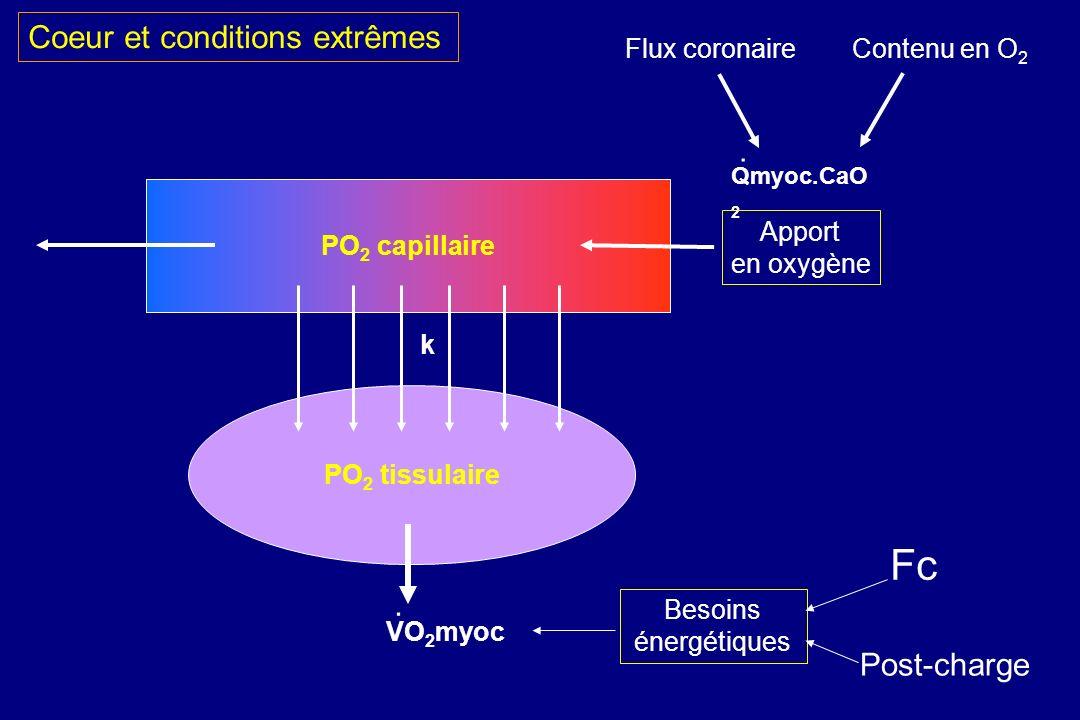 PO 2 capillaire PO 2 tissulaire VO 2 myoc k. Qmyoc.CaO 2. Besoins énergétiques Fc Post-charge Apport en oxygène Flux coronaireContenu en O 2 Coeur et