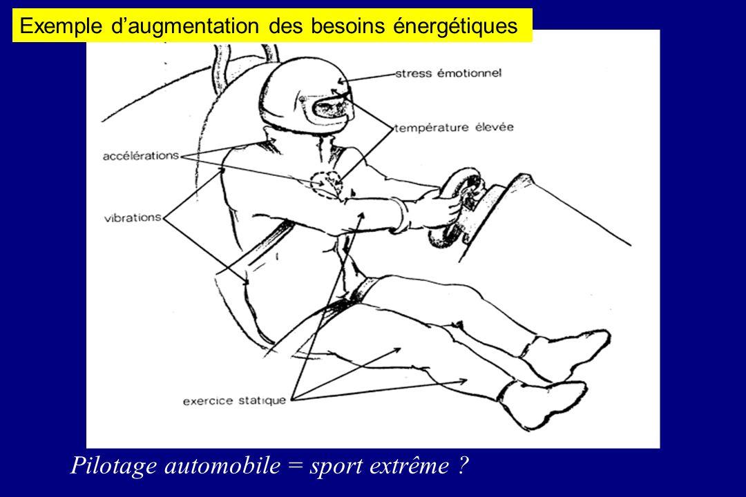 Pilotage automobile = sport extrême ? Exemple daugmentation des besoins énergétiques