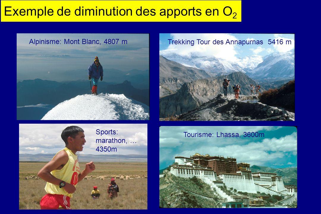 Exemple de diminution des apports en O 2 Alpinisme: Mont Blanc, 4807 m Trekking Tour des Annapurnas 5416 m Tourisme: Lhassa, 3600m Sports: marathon, …