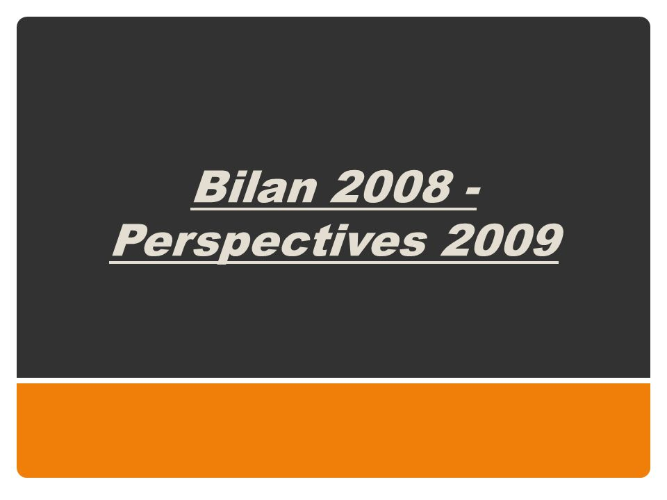 Bilan 2008 - Perspectives 2009