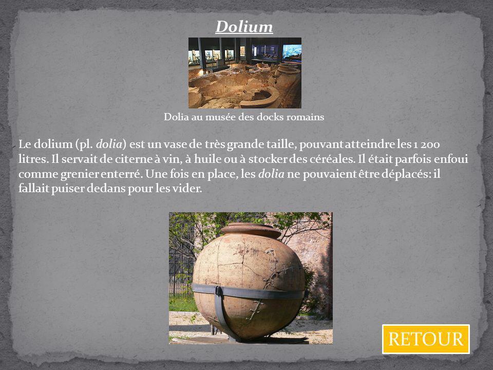 Dolium Dolia au musée des docks romains Le dolium (pl. dolia) est un vase de très grande taille, pouvant atteindre les 1 200 litres. Il servait de cit