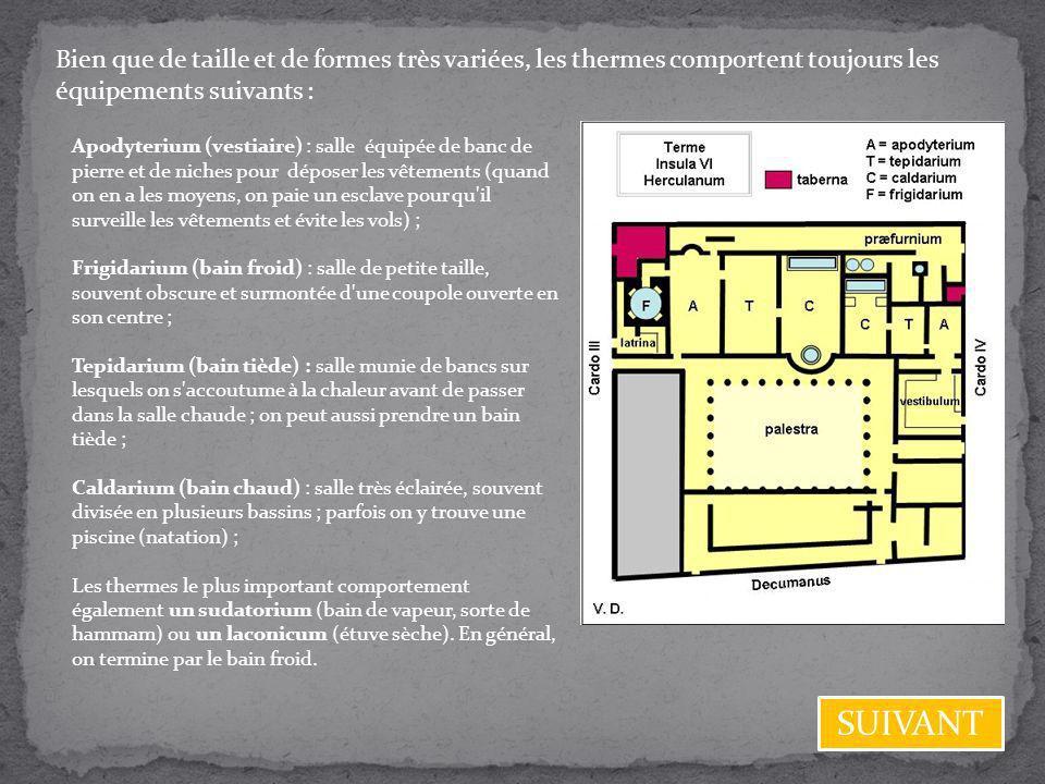 Bien que de taille et de formes très variées, les thermes comportent toujours les équipements suivants : Apodyterium (vestiaire) : salle équipée de ba